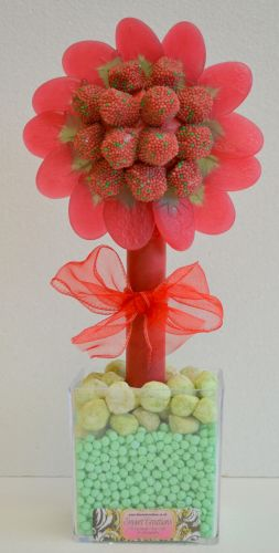 Strawbs Flower Sweet Tree 35cm